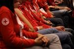 Fotografia della plenaria del 30 ottobre 2010